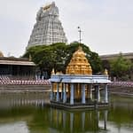 Why the Athi Varadar idol is kept immersed in water